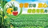 蔬菜配送公司利用短信宣传做得真好